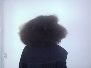 Tamara's Hair Before (Back View)