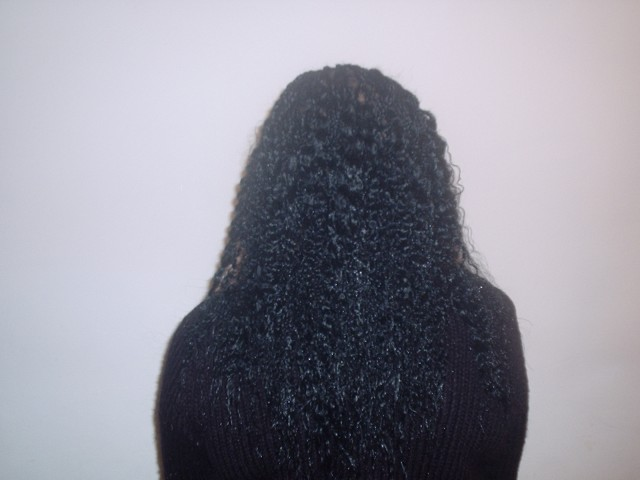 Single Plaits with Curly Ends (Back)